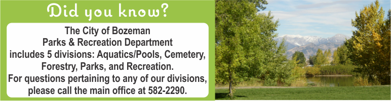 Parks & Recreation Department includes Cemetery, Forestry, Parks, Pools/Aquatics, and Recreation