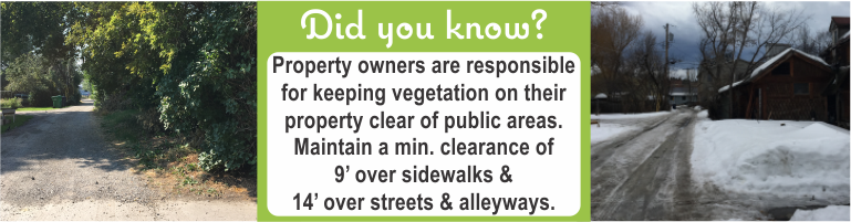 Maintain a minimum clearance of 9' over sidewalks & 14' over streets & alleyways.