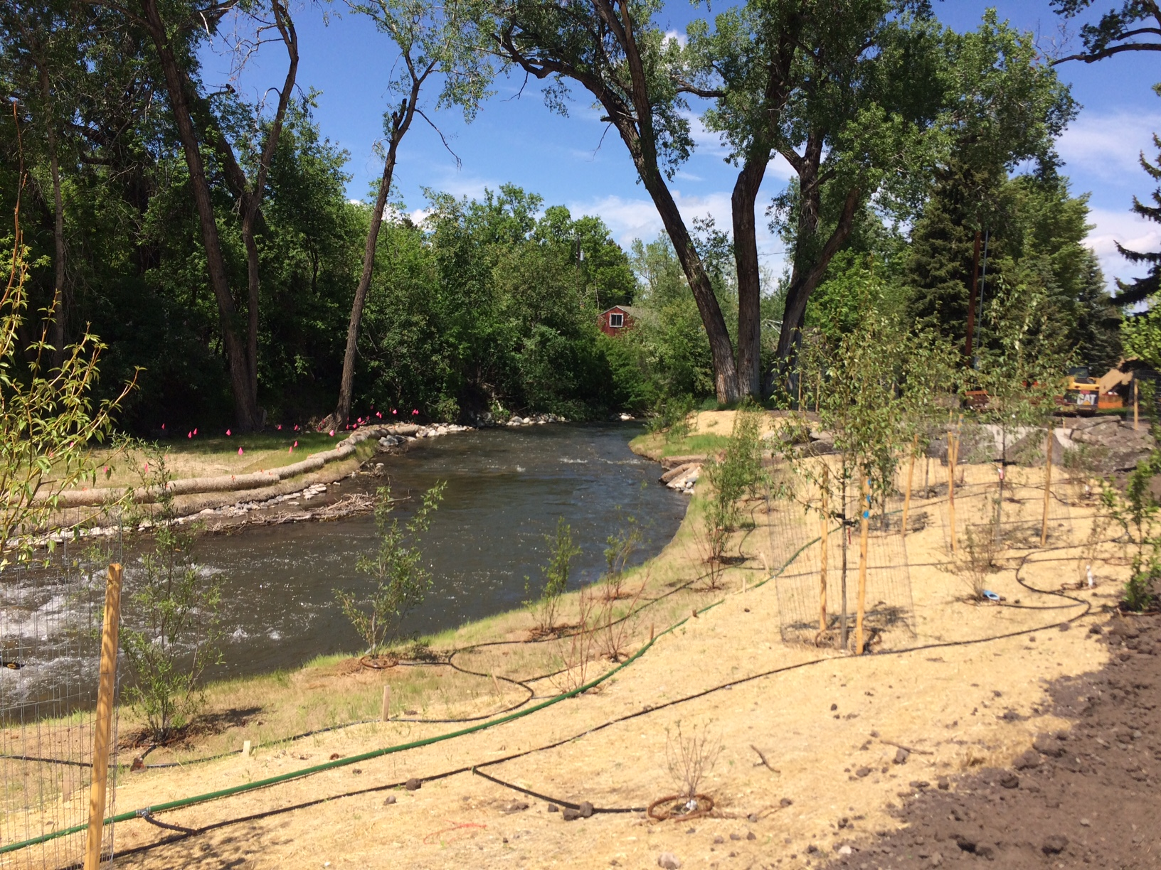 TOP Project - Bozeman Creek Enhancement at Bogert Park